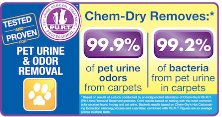 Chem-Dry of the Foothills removes 99.9% of pet urine odors from carpets. Trust us to professionally clean and remove unwanted odors today!